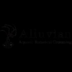 Alluvian